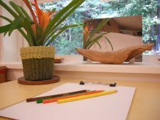 I love this prompt: a mirror, hunk of drift wood, a plant, paper, and colored pencils in the color of the natural items.