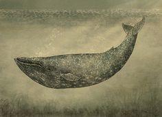 Damask Whale Art Print by Terry Fan - Terry Fan, Whale Art, Blue Whale, New Wall, Damask, Graphic Art, Graphic Prints, Illustration Art, Art Prints