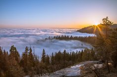 #nature #beautiful #scenery Clouds came in as we headed home. Sequoia National Park CA [5256 x 3504] [OC]