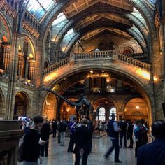 The @NHM_London always looks stunning in the evening light #SU2015 #Museum #London