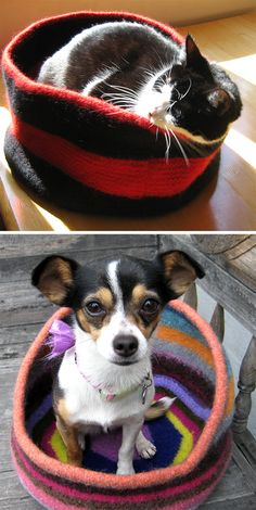 A round, high-sided, felted wool cat bed. Features a welt at the base to keep its shape, and tall sturdy sides - my cat loves her privacy! Knitting Patterns For Dogs, Knitting Projects, Free Knitting, Crochet Dog Sweater, Knitted Cat, Felt Cat, Dog Sweaters, Pet Beds, Cat Toys