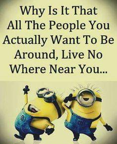 Afbeeldingsresultaat voor why friends living far Minion Jokes, Minions Quotes, Minions Minions, Funny Minion, Minion Pictures, Funny Pictures, Funny Pics, Funny Cute, Hilarious