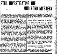Sweet Tea, Tart Lemons & Memories: Saturday Spotting - Mud Pond Mystery