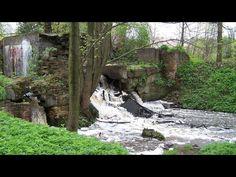 Na zdjęciu widać mały wodospad znajdujący się w Mojej Woli.