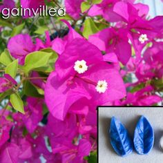 Flower making made easy Edible Diamonds, Food Coloring, Flower Making, Make It Simple, Cake Decorating, Candy, Crystals, Flowers, How To Make