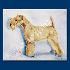 Lakeland Terrier Note Cards (blank)  by Ruth Maystead