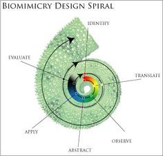 NATURE INNOVATION INSPIRED BIOMIMICRY BY