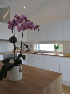 modern kitchen white handleless cabinets oak countertop oak kitchen island
