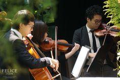 String Quartet Performing Coldplays Viva Da Vida