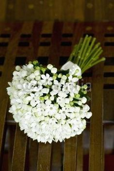 bouquet de bouvardia - Buy this stock photo and explore similar images at Adobe Stock White Wedding Flowers, Bridal Flowers, Fall Flowers, Flower Bouquet Wedding, White Flowers, Floral Wedding, Beautiful Flowers, Bouvardia Wedding Bouquet, Mermaid Bridal Gowns