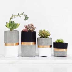 Cool colors for your homemade planters made of quick cement. - Cool colors for your homemade planters made of quick cement. You are in the right place about Home d - Concrete Pots, Concrete Crafts, Concrete Projects, Diy Projects, White Concrete, Cement Planters, Concrete Backyard, Pavers Patio, Patio Stone