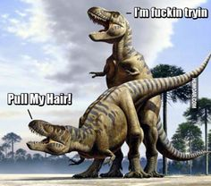 Trex is trying