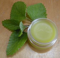 Lemon Balm Salve for Cold Sores Blisters Blemishes and Bug Flu Remedies, Herbal Remedies, Lemon Balm Uses, Tea Tree Essential Oil, Cold Sore, Drying Herbs, Sweet Almond Oil, Natural Skin Care, Lip Balm