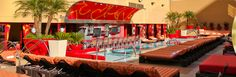 The Golden Nugget - not on the strip but had an amazing adult pool area with good food and drink! Las Vegas Vacation Packages, Adult Pool, Affordable Vacations, Golden Nugget, Pool Bar, Lounge Seating, Travel Deals, Cabana, Great Places