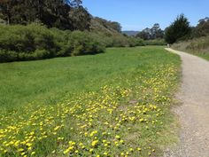 San Pedro Valley Park hike in Pacifica, California in Northern California.