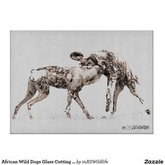 Shop for Home wood wall art on Zazzle. Have your favorite picture, artwork, or inspirational text printed on wood! Wildlife Home Decor, Wildlife Art, African Wild Dog, African Safari, Wild Dogs, Wood Wall Art, Wildlife Photography, Wood Print, Moose Art