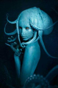 'Octopus' Piksel by Edgardo Arredondo