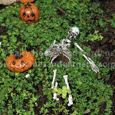 halloween fairy garden dollar tree halloween Pinterest