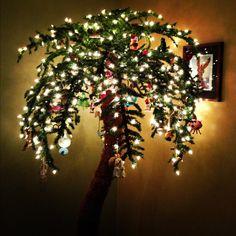 This will be my Christmas Tree Christmas Palm Tree, Tropical Christmas, Beach Christmas, Coastal Christmas, Christmas Door Decorations, Holiday Decor, Ramadan Celebration, Aussie Christmas, Christmas Program