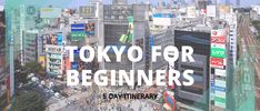 If you are visiting Japan for the first time, check out this 3 day Kyoto itinerary for tips on where to go, and what to do and see! Kyoto Itinerary, Nijo Castle, Monkey Park, Cherry Blossom Season, Japan Travel Guide, Visit Japan, Osaka Japan, World Heritage Sites, Where To Go