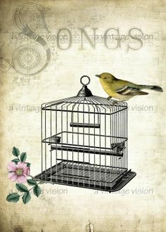 Vintage Prints, birdcage, large digital image no. 33a, 5 by 7- aged, antique, altered, bird, cage, flower, song, music