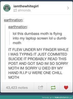 One chill moth....