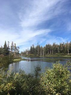Mammoth Lake dans le nord de la Californie. Reposant en été et station de ski en hiver.
