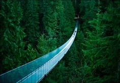 Puente colgante de Capilano, Vancouver, Canadá.
