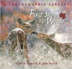 First Snow in the Woods: A Photographic Fantasy: Carl R. Sams, Jean Stoick: 9780977010868: Amazon.com: Books