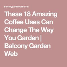 These 18 Amazing Coffee Uses Can Change The Way You Garden | Balcony Garden Web