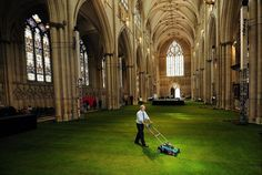 Cathedral Interior Covered in Grass