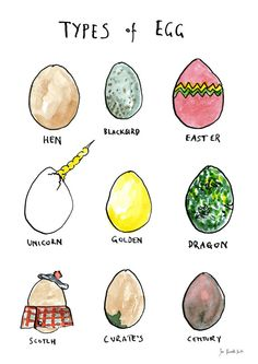 Types of Egg  art print by JenRussellSmith on Etsy, £8.00