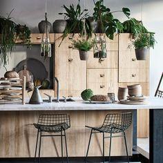 Un jardin intérieur dans la cuisine