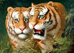 (North Korea) Tigers by Kim Cheol-jin (1962-  )
