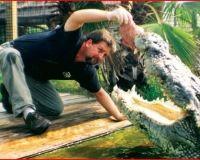 Alligator Adventure - Myrtle Beach 102 things to Do - Myrtle Beach, SC - MyrtleBeach.com
