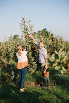 Adorable engagement session: http://www.stylemepretty.com/2014/09/19/fun-ways-to-infuse-fall-fruit-into-your-wedding/