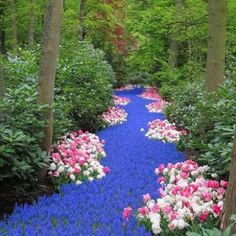 The River of Flowers v Keukenhof, Holandsko