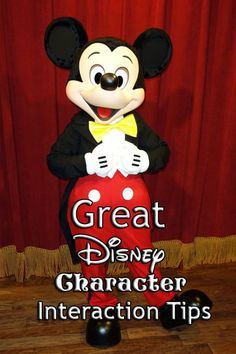 Disney World Tips | Disney Character Interaction Tips, Advice, and more!