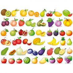 Fruit Icons, Food Icons, Fruit Vector, Fruit Photography, Best Fruits, Color Vector, Food Illustrations, Types Of Food, Different Recipes