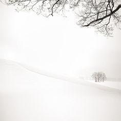 Winter *❄️~*.Wishes & Dreams.*~❄️*