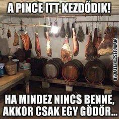 Funny Memes, Jokes, Haha, Have Fun, Retro, Hungary, Celebrities, Humor, Celebs