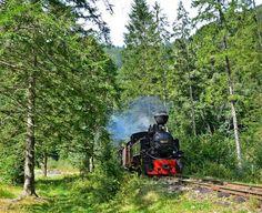 Călătorie în timp cu mocănița, prin Maramureș Inspire Others, Train, Country, Inspiration, Places, Biblical Inspiration, Rural Area, Trains, Country Music
