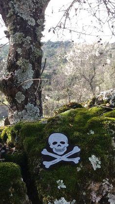 La naturaleza en peligro (1)