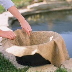 Pond Landscaping, Ponds Backyard, Garden Ponds, Backyard Bar, Tropical Landscaping, Pond Plants, Aquatic Plants, Water Plants For Ponds, House Plants