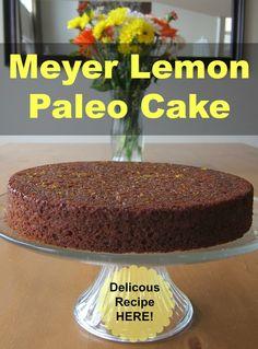This Meyer Lemon Paleo Cake is the best grain-free dessert I have tasted!