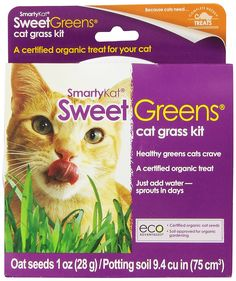 SmartyKat Sweet Greens Cat Grass Kit >>> Continue to the product at the image link.