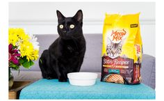 Just spoil your cat with Meow Mix Bistro from Walmart! The bistro-inspired food will keep them purring with joy bit.ly/2jx6jtn #Ad