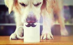 y con mi tacita de #café, la semana se bebe mejor!!  Buen dia!! #coffeelovers