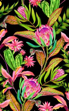 New Ideas for flowers black background painting floral patterns Design Textile, Design Floral, Tropical Design, Tropical Pattern, Tropical Art, Textile Prints, Black Background Painting, Flowers Black Background, Textures Patterns