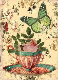 Накладки Butterfly купить дешевле в интернет-магазине